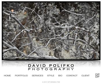 www.davidpolifko.com